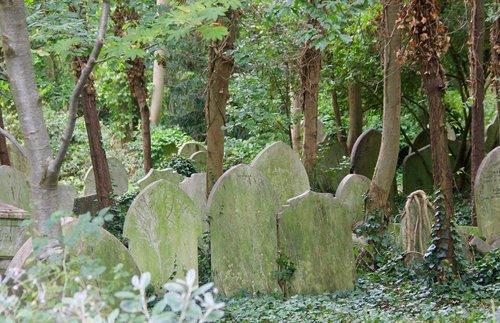 forgotten  cemetery  graveyard