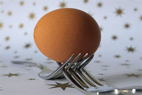 fork egg cutlery