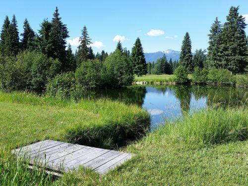 forrest montana pond