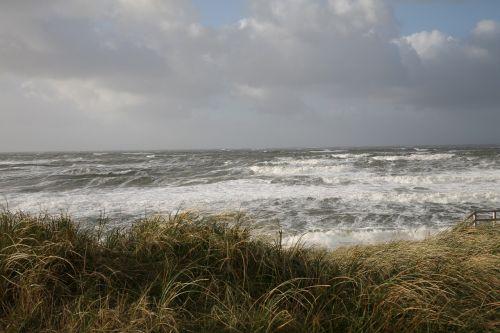 forward sea wind