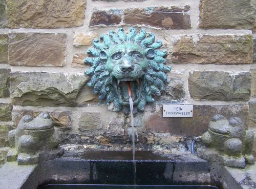 fountain pool lion