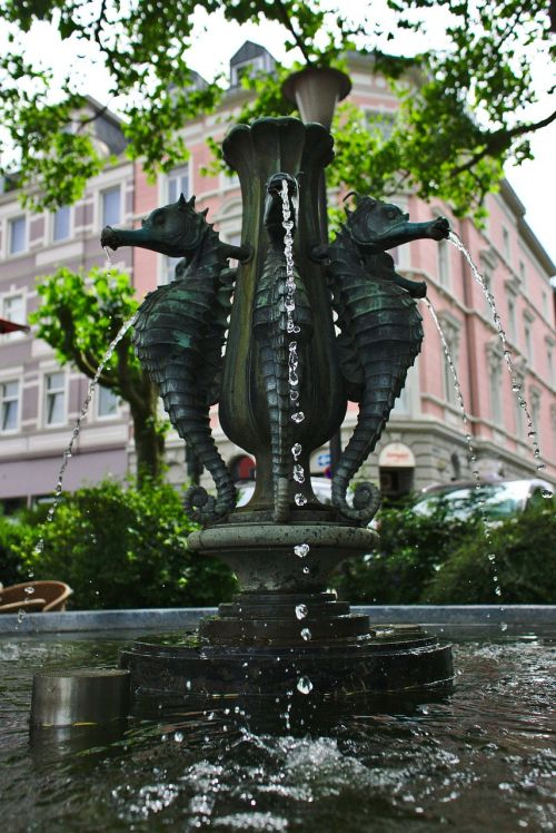fountain seahorse architecture