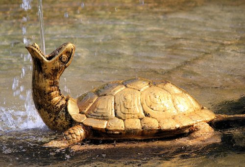 fountain  turtle  gold