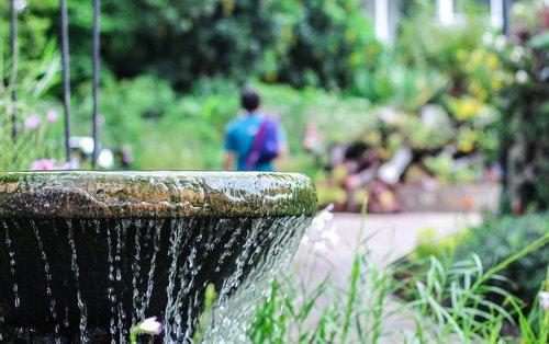 fountain  water  botanic garden