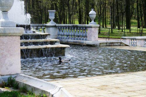 Fountain Water Pond, Peterhof