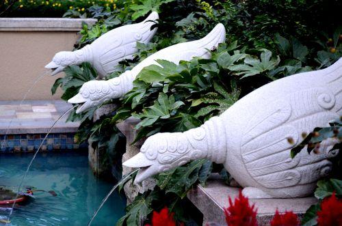 Fountains Spouting