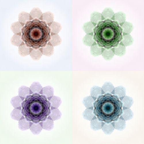 Four Flower Quilt Pattern