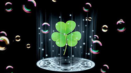 four leaf clover luck lucky clover