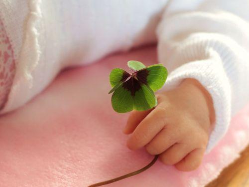 four leaf clover luck baby