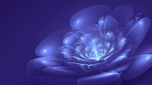 fractal blue flower blue