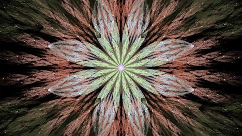 fractal floral fantasy