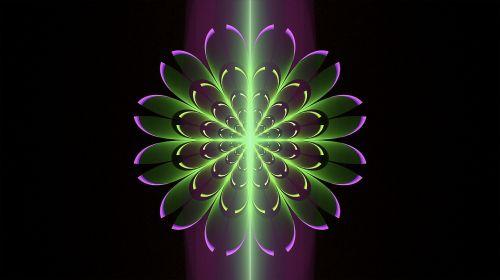 fractal purple lime