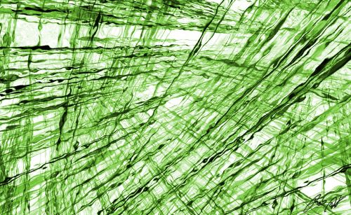fractal green digital