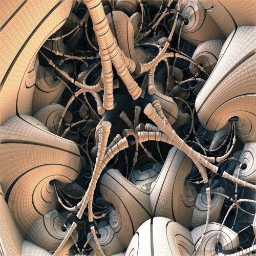 Fractal Roots