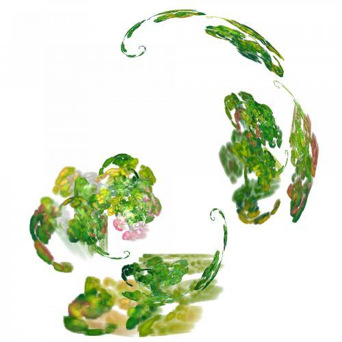 žalias, daržovės, fraktalas, balta, fonas, figūra, garbanotas, kampai, fraktaliniai daržovės
