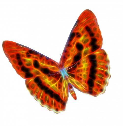 Fractal Wire Butterfly Orange Blend