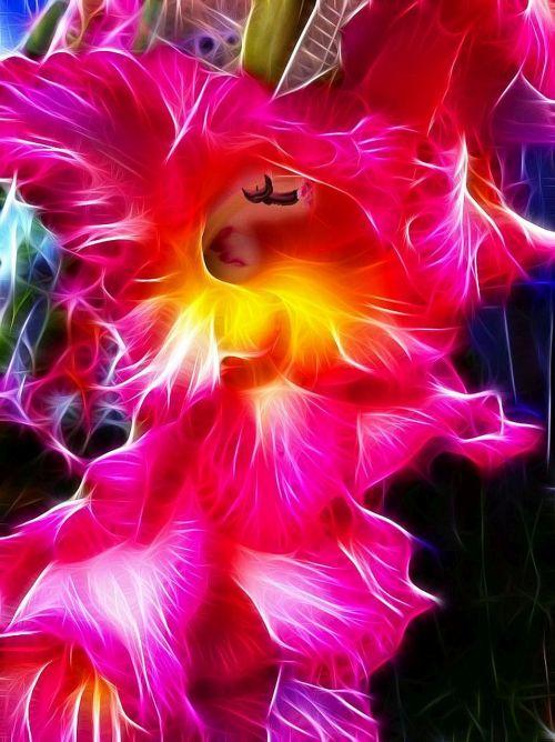 fractalius gladiolus image editing