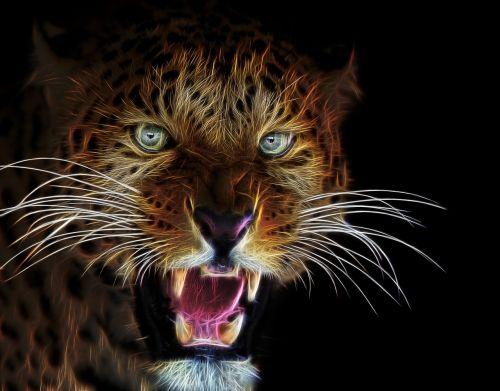 fractalius profile picture cat