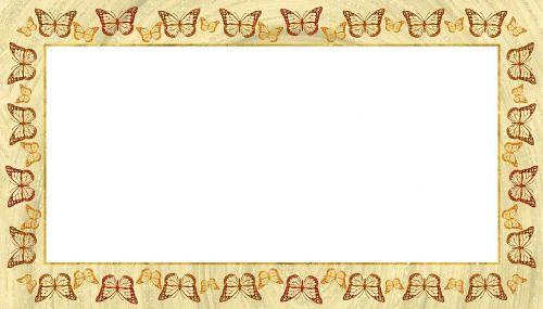 frame picture butterfly