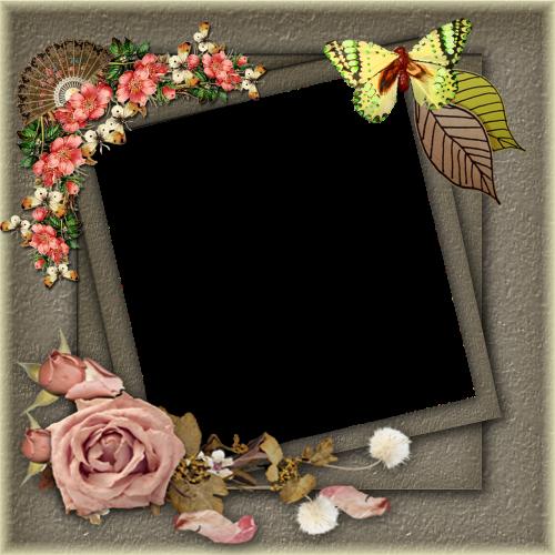frame png frame png pictures frame png floral