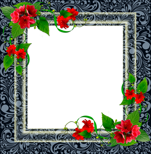 frame png frame photo frame floral