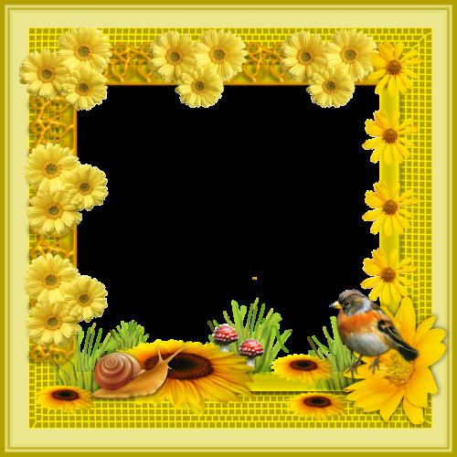 framework flowers frame png