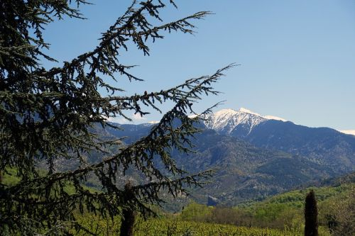 france eastern pyrenees canigou