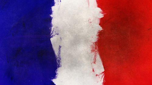 france flag home