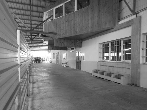 france market market hall