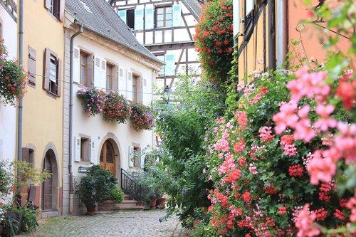 france  alsace  eguisheim