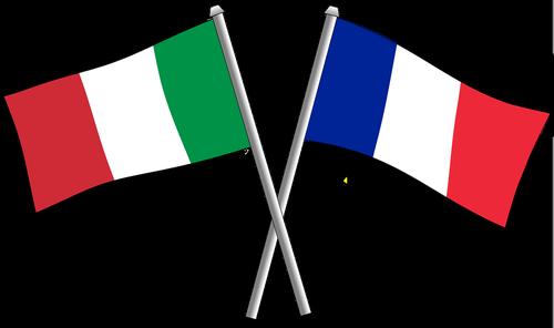 france  friendship  flag
