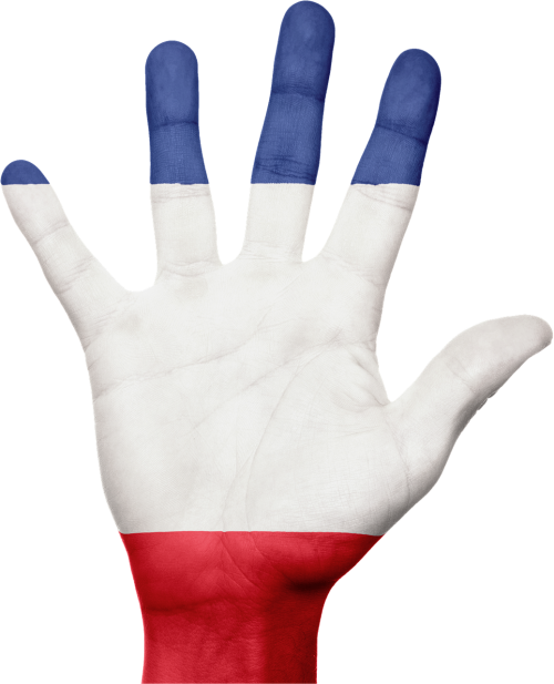 france flag hand