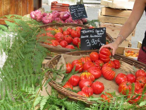 france market tomatoes