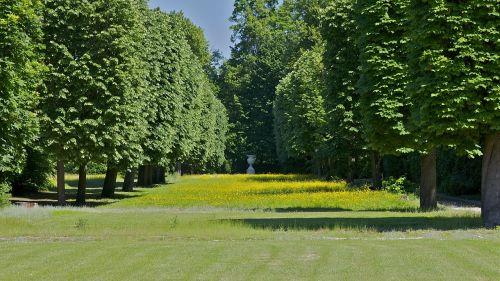 france landscape forest