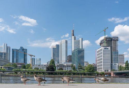 frankfurt city outlook