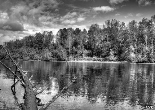 fraser river black