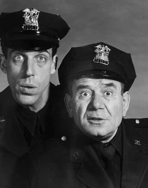 fred gwynne police officers joe e ross