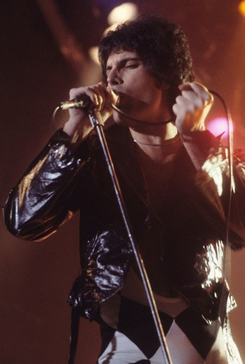 freddie mercury singer entertainer