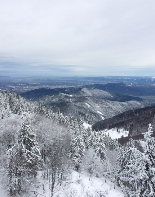 freiburg schauinsland snow