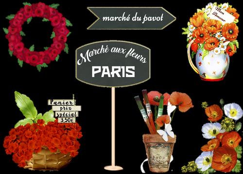 french flower market  poppy  marche aux fleurs