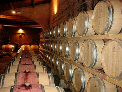 frescobaldi wine cellar wine barrels
