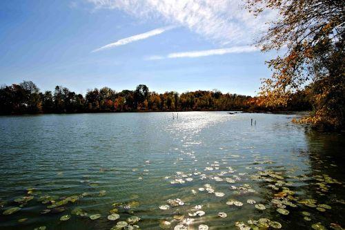 fresh water lake inland sunlight