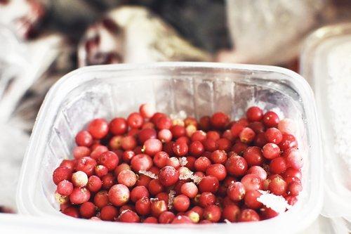 fridge  berry  red berry