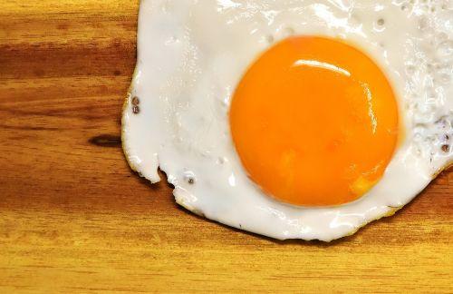 fried egg yolk protein