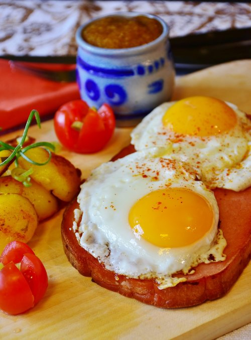fried  egg  liver cheese