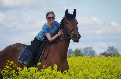 friends horse reiter