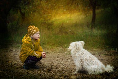 friendship dog however
