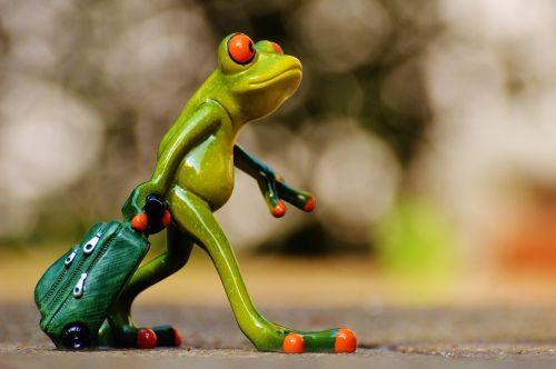 frog farewell travel