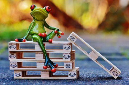 frog euro pallets sit