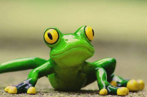 frog funny figure